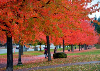 Fall @ Vancouver